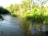 Дикая река Амазонка